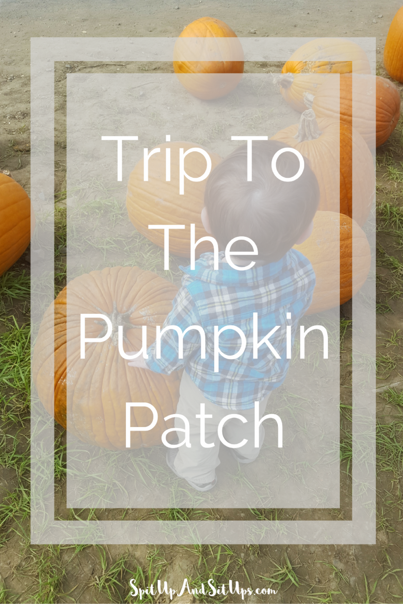 Trip to the pumpkin patch, toddler fun, fun with my toddler, fall fun, fall fun with toddler, pumpkin patch with toddler