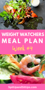 Weight Watchers Meal Plan #4