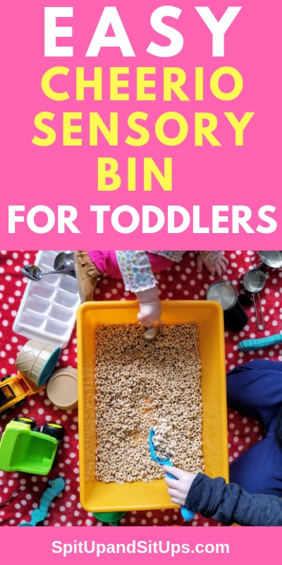 Easy Cheerio Sensory Bin for Toddlers