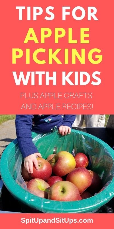 tips for apple picking with kids pinterest image